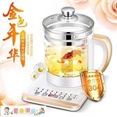 養生壺 110V美國 多功能電煮鍋 日本全自動加厚玻璃電熱燒水壺 童趣