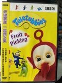 挖寶二手片-B34-正版DVD-動畫【天線寶寶:一起摘水果】-國英語發音(直購價)