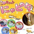 《不挑款》可愛小貓 爬線喵喵 貓咪掛飾 吊飾 小飾品 繞線器 耳機 傳輸線 3.5mm通用款