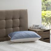 雙效涼感防蟎抗菌記憶枕-藍加高型