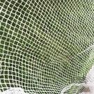 防鳥網 防蝗蟲網防鳥網葡萄果園櫻桃樹網魚塘冰雹網葡萄養殖網檔雜物防護 庭院用品