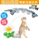 飛舞蝴蝶電動逗貓玩具 貓咪益智玩具 貓咪遊樂園 逗貓玩具 蝴蝶玩具 電動逗貓 貓玩具 寵物玩具