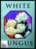 WHITE FUNGUS(國際英文版)第16期