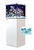 {台中水族}以色列原裝Red Sea -REEFER NANA珊瑚礁岩水族套缸(白ㄅ)  特價  45*45*45cm 超白玻璃8mm