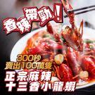 美食饗宴-香辣帶勁-正宗麻辣十三香小龍蝦