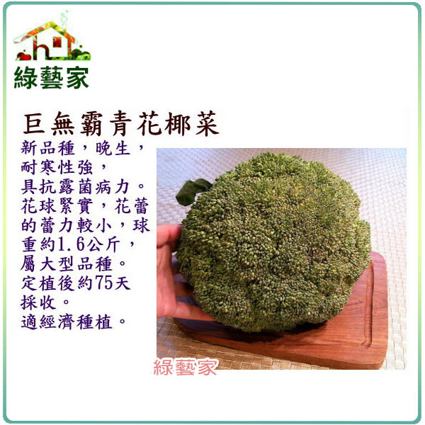 【綠藝家】B21巨無霸青花椰菜種子50顆