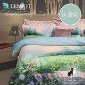pippi & poppo 雨後春色 數位印花 天絲60支兩用被床包四件組(雙人標準5尺)