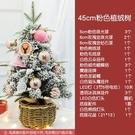 聖誕樹 耶誕樹小型迷你桌面樹擺件粉色網紅ins家用發光60cm耶誕節裝飾品T