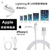 【YUI】APPLE iPhone 5S/5C/5 iPad 4/ iPad Air 原廠傳輸線 數據傳輸線 Lightning 原廠充電線 100CM (裸裝)