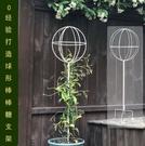 棒棒糖爬藤架鐵藝球形花架風車茉莉鐵線蓮藍雪花插小木槿支架 - 巴黎衣櫃