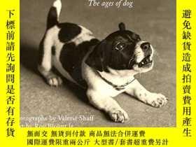 二手書博民逛書店I罕見Am Puppy Hear Me YapY255562 Valerie Shaff Harpercoll