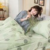 床包 / 雙人【晨曦之柏】含兩件枕套  100%精梳棉  戀家小舖台灣製AAS201