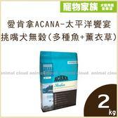 寵物家族-愛肯拿ACANA-太平洋饗宴 挑嘴犬無穀配方(多種魚+薰衣草)2kg
