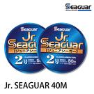 漁拓釣具 SEAGUAR Jr. SEAGUAR #5.0 40M [碳纖線]