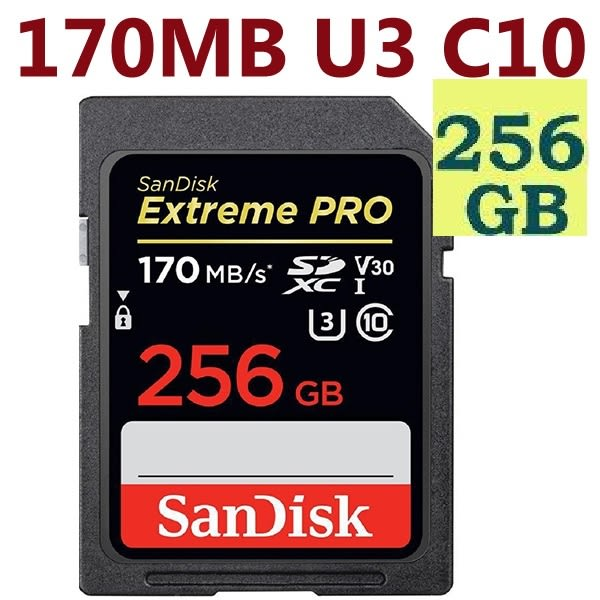 免運】SanDisk 256GB 256G SDXC【170MB/s】Extreme Pro SD SDHC UHS 4K U3 C10 V30 SDSDXXY-256G 相機記憶卡 記憶卡