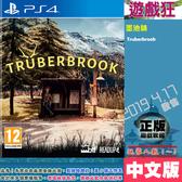 PS4 墨池鎮(中文版)