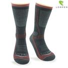 Lorpen T3 Primaloft美麗諾羊毛登山襪T3HT(IV) /城市綠洲(保暖襪、健行襪、吸濕排汗)