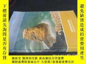 二手書博民逛書店UNITED罕見NATIONS HANDBOOK 2010-20