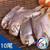 【漁季】台灣彭佳嶼現流野生小白鯧*10包(500g±10%/包)