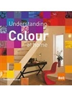二手書博民逛書店 《Understanding Colour at Home》 R2Y ISBN:0500512191│THAMES&HUDSONLTD.