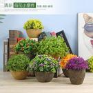 仿真花植物盆栽客廳裝飾花假草室內塑料花窗...