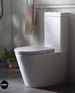 【麗室衛浴】德國高級GEBERIT ETERNITY 2  系列   雙體馬桶 A-194