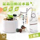 引水盆栽自動澆水器 2個裝 植物花卉滲水...