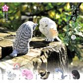 全套5款【日本正版】鞠躬行禮動物 P3 扭蛋 轉蛋 敬禮動物 鞠躬動物 - 824380