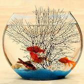 超白扁形圓形水培鐵樹金魚缸創意熱帶魚桌面迷你小型玻璃魚缸igo 茱莉亞嚴選