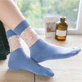 襪子女中筒襪春夏四季款棉襪玻璃絲襪