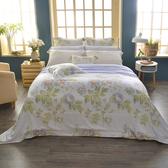 法國CASA BELLE《伊蕾娜》加大天絲刺繡四件式防蹣抗菌吸濕排汗兩用被床包組