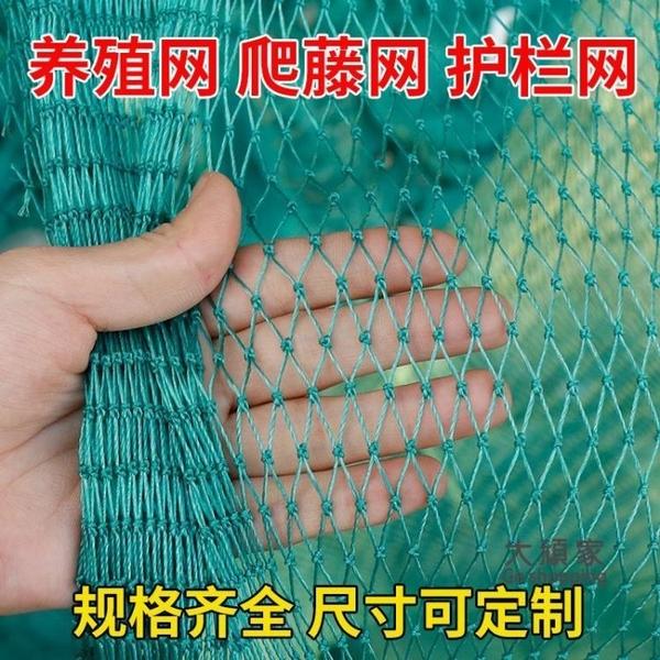 防鳥網 家禽養殖網山雞網養雞網尼龍網攔雞圍網防鳥用網護欄菜園網爬藤網 庭院用品