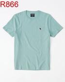 AF A&F Abercrombie & Fitch A & F 男 當季最新現貨 短袖T恤 AF R866