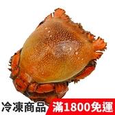 饕客食堂 澳洲旭蟹 500-600g/隻 海鮮 水產 生鮮食品