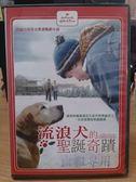 影音專賣店-Y86-042-正版DVD-電影【流浪犬的聖誕奇蹟】-讓狗狗貓貓遇見生命中的聖誕老人