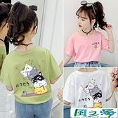 兒童短袖上衣女童短袖t恤中大童白色兒童卡通純棉體恤夏季 風之海