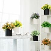 北歐仿真植物盆景家居客廳擺件裝飾品小清新盆栽花卉仿真假花套裝·享家