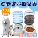 超大容量3.8L自動飲水餵食器 飼料碗 水碗 寵物碗 寵物飼料碗 寵物餵食 寵物餐具 狗碗 貓碗