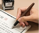 鋼筆 學生用辦公書寫練字特細銥金復古木質...