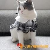 韓版IG狗狗貓咪寵物衣服可愛公主水手服原創薄款純棉英短【小獅子】