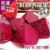 預購-家購網嚴選 屏東紅肉火龍果5斤大(約7-8顆)x4【免運直出】