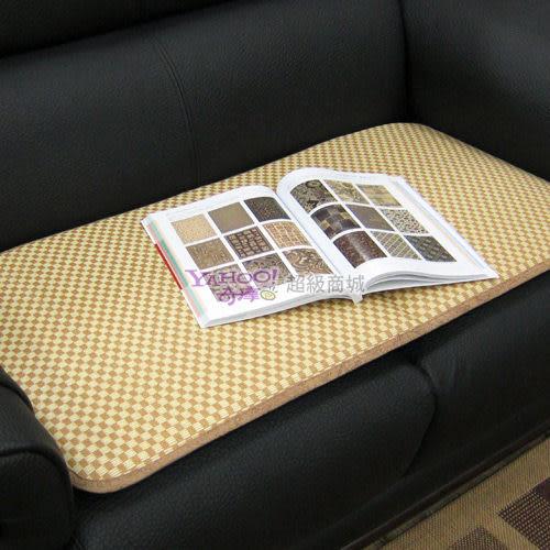 范登伯格 采藤☆植草二人坐墊/沙發墊-50x100cm
