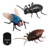 【888便利購】紅外線遙控仿真住家昆蟲(螞蟻/蒼蠅/蟑螂)(授權)