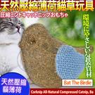 【培菓平價寵物網】美國CosmicCat...