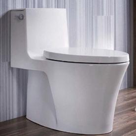 【麗室衛浴】美國 KOHLER活動促銷 VEIL單體馬桶 K-1381T-S-0 五級旋風綠能 附緩降蓋