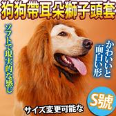【培菓幸福寵物專營店】DYY》叢林之王狗狗變身搞怪帶耳朵獅子頭套S號-頸圍50cm以下