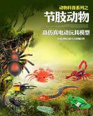 遙控動物仿真昆蟲世界電動模型新款甲蟲蜈蚣蜘蛛青蛙螃蟹整蠱玩具【父親節禮物】