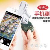 手機放大鏡帶LED燈100倍高清電子珠寶鑒定手持顯微鏡60迷你便攜式OB2788『毛菇小象』