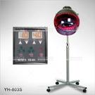 台灣紳芳   YH-803S蜂巢式微電腦吹風機(立式)[56008]美髮開業儀器設備
