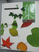 【書寶二手書T1/少年童書_ZKD】葉-製造養分的化工廠_彭鏡毅